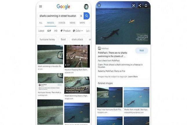Google añade una etiqueta que fomenta la información en la búsqueda de imágenes