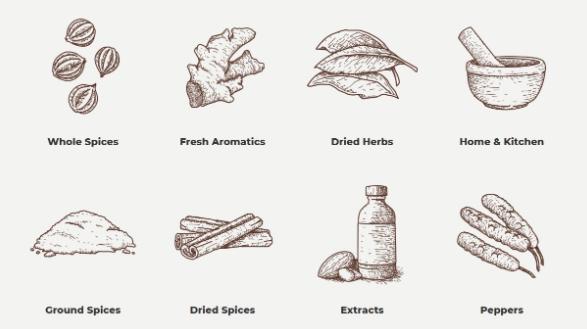 ilustraciones diseño web