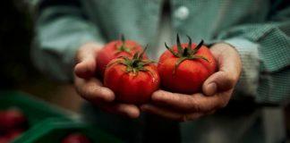 Alvalle celebra el Día del Gazpacho y su 30 aniversario desvelando el secreto de su receta