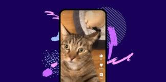 YouTube Shorts Españá y un gatito