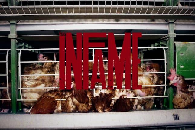 Te Invito a KFC: Ke Firmes Conmigo, la nueva campaña de Darwin Social Noise para Igualdad Animal