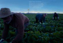 McDonald's reparte tótems por España para determinar el origen de sus alimentos