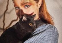springfield gatos negros
